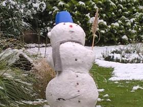 Schneebär...