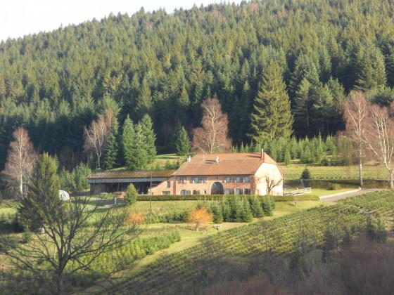 Farmhaus in den Vogesen