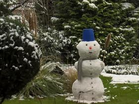Schneebär
