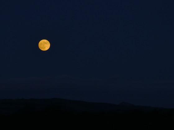 Mister Moon...