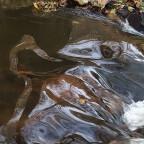 Die Schlaube, kl. Wasserfall