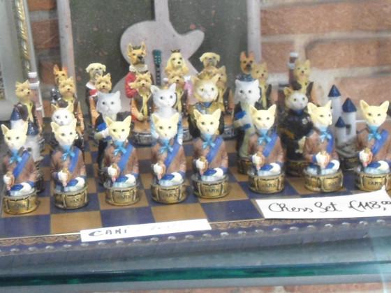 Hunde - Katzen Schach