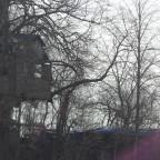 verstecktes Baumhaus